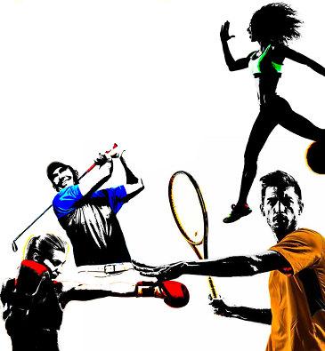 sportquiz fragen und antworten